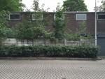 http://www.ontwerplab.nl/files/gimgs/th-48_tilburg-korvelseweg-minderbroederspad-bestaand-magazijn.jpg